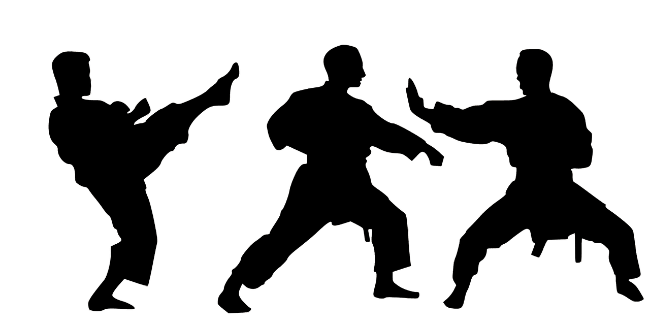 Japanese Martial Arts – More Educational Information