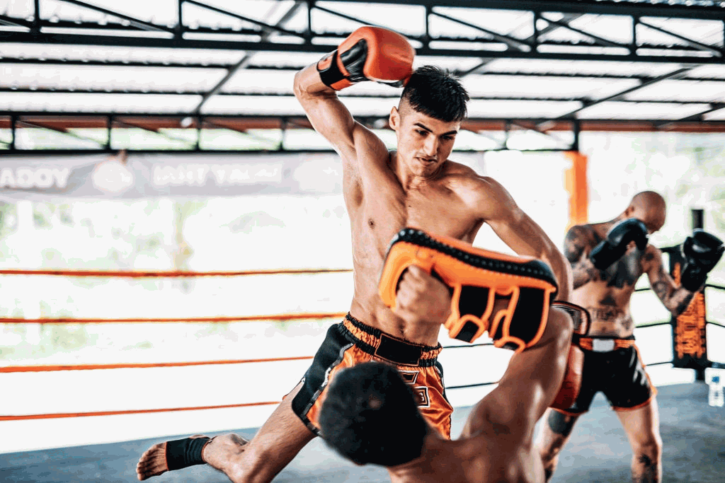muay thai professionals fighting