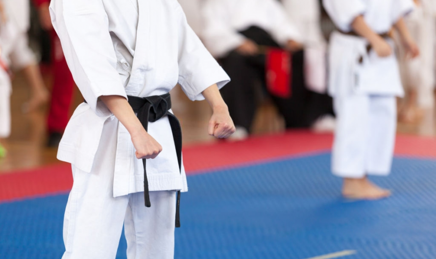 5 Easiest Martial Arts You Can Learn Quickly