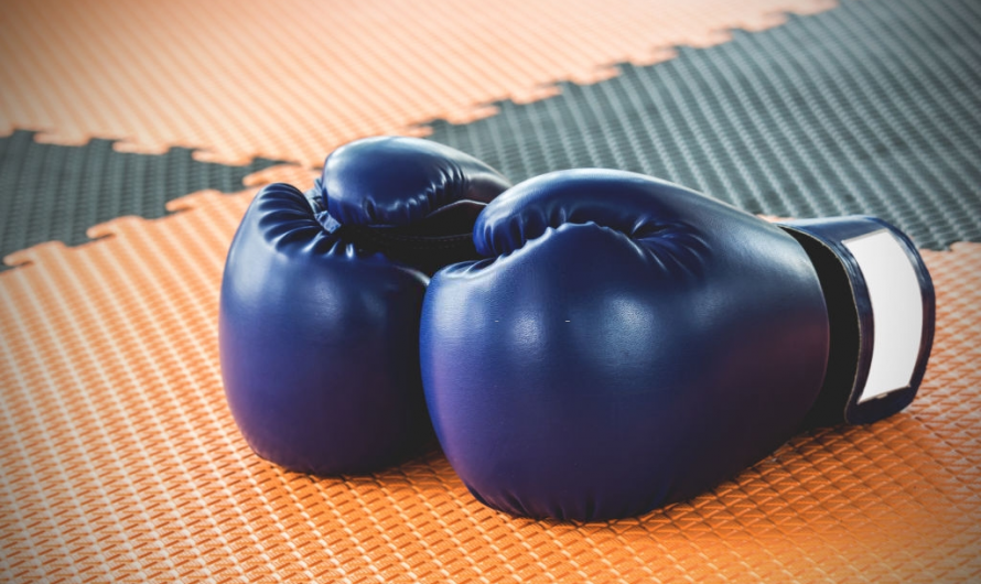 How Much Do Boxing Gloves Cost?