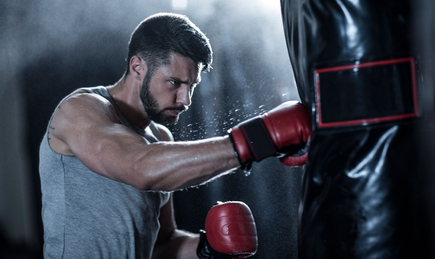 Types of Punching Bags & How to Choose