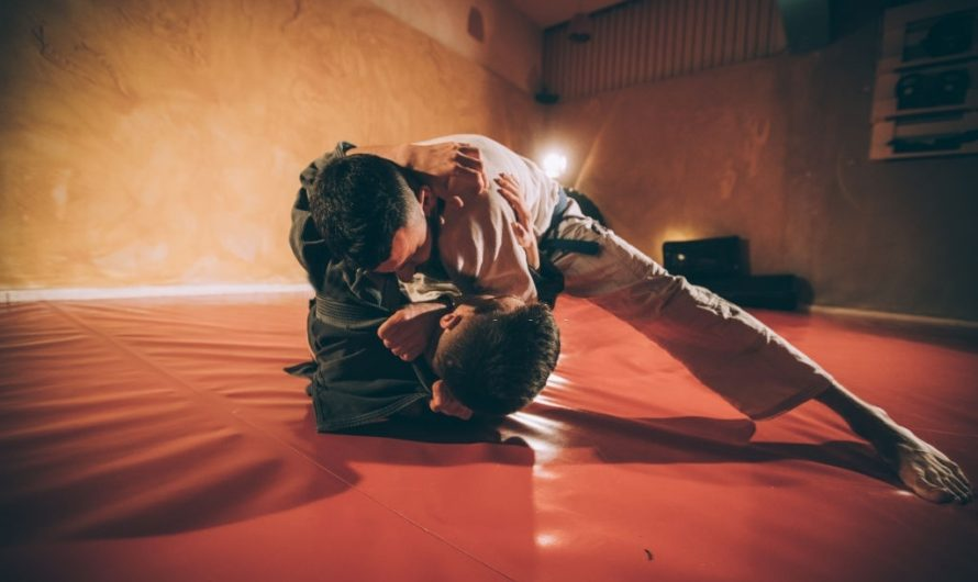 Judo vs Wrestling: Which one's better?