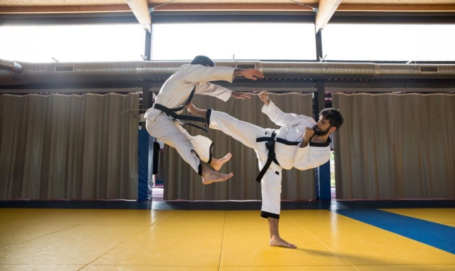 Hapkido vs Aikido: Which one's Superior?