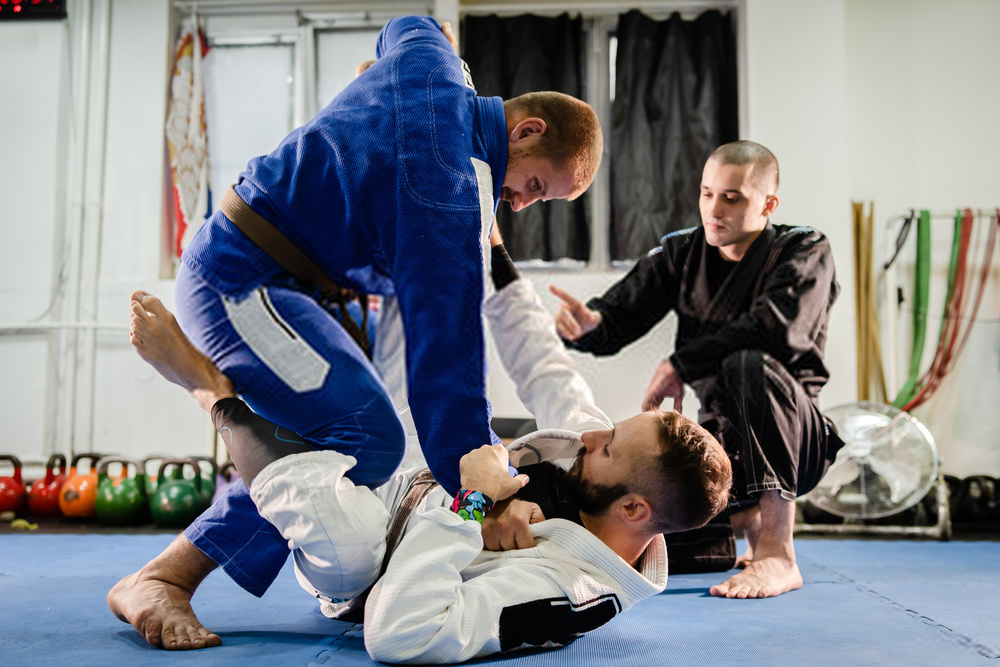 Brazilian JIu Jitsu BJJ private class professor
