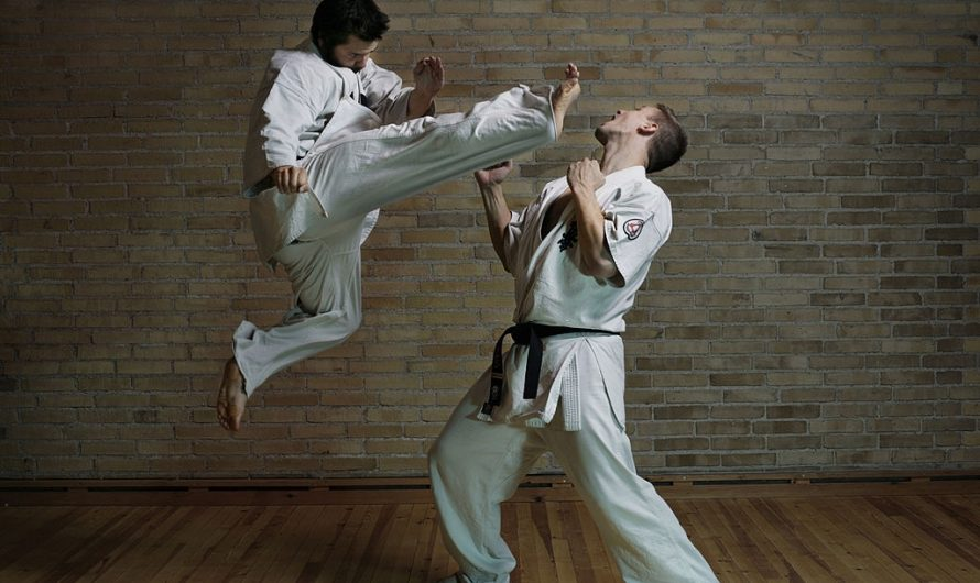 Shotokan Vs Shorin Ryu: Which One's Superior?