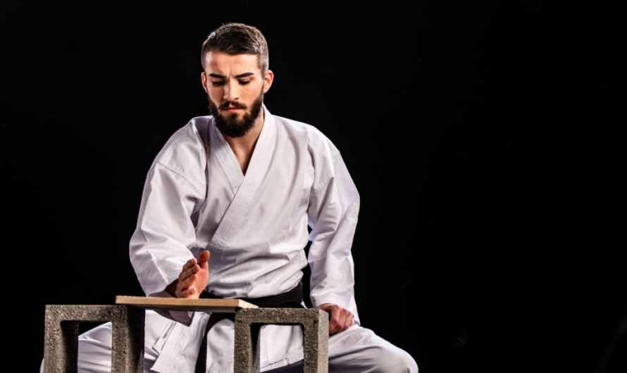 Goju Ryu Vs. Shotokan: Differences & Efficiency