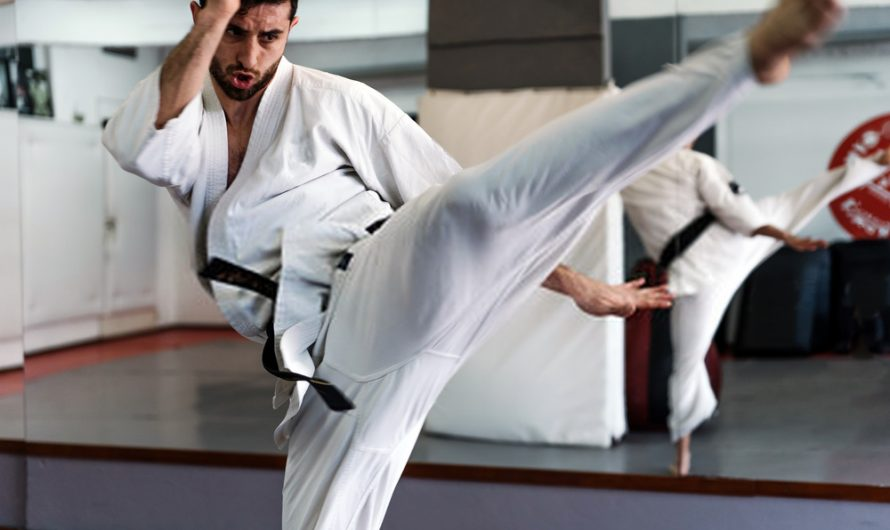 10 Reasons Isshin-Ryu is an Effective form of Karate