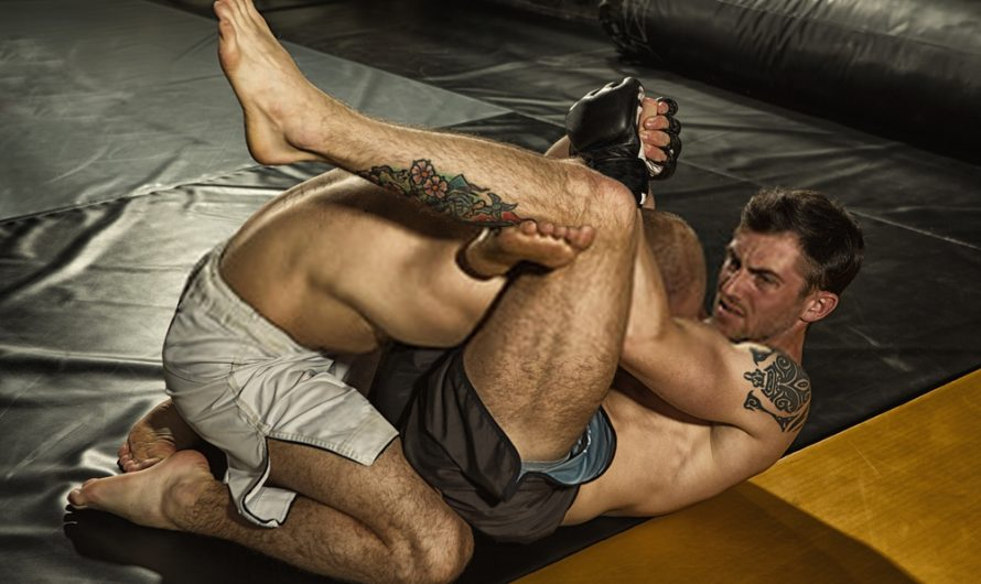 The Lazy Fighter's Guide to Combat Jiu Jitsu