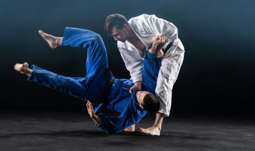 Karate vs Judo: Differences and Effectiveness