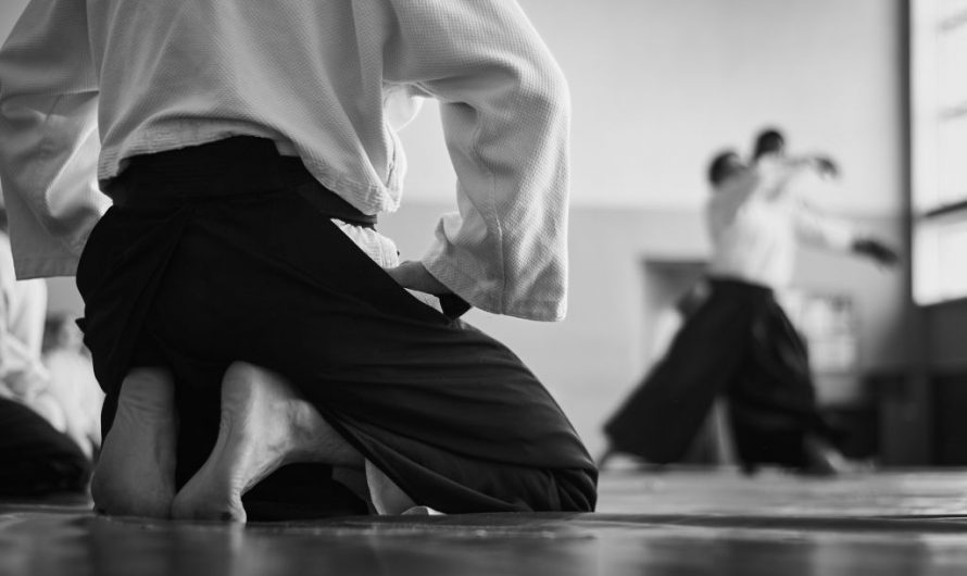 Aikido vs Judo: Differences & Effectiveness
