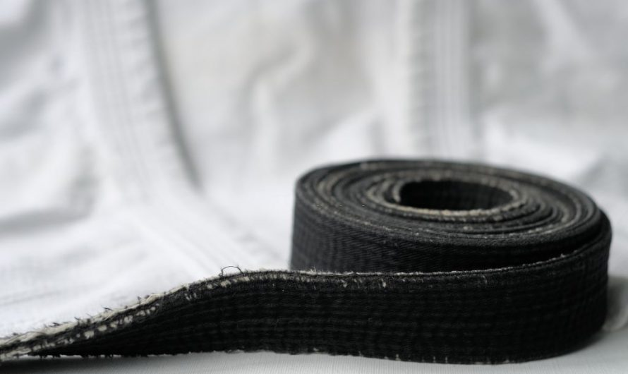 The Aikido Belt System: Ranks & Levels