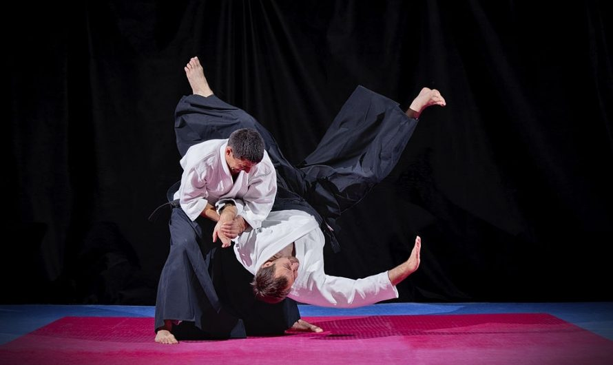 10 Most Effective Aikido Techniques