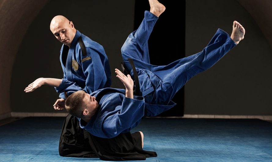 Krav Maga vs Aikido: Differences & Effectiveness