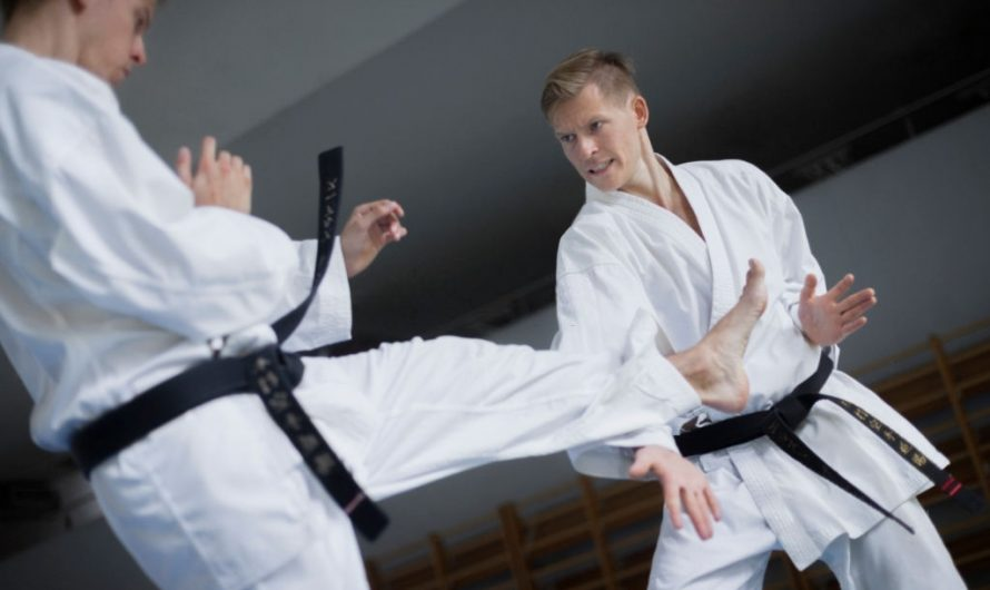 Aikido vs Karate: Differences & Effectiveness