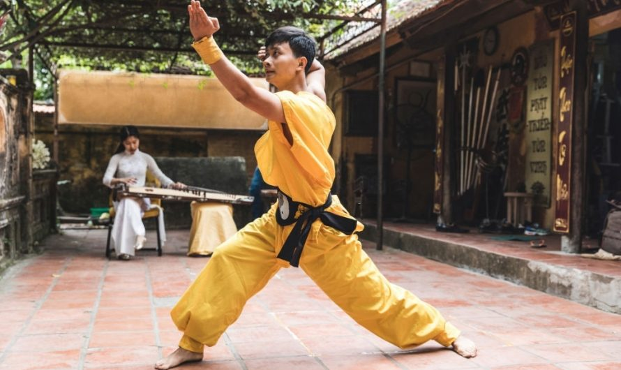 Karate Vs Kung Fu: Differences & Effectiveness
