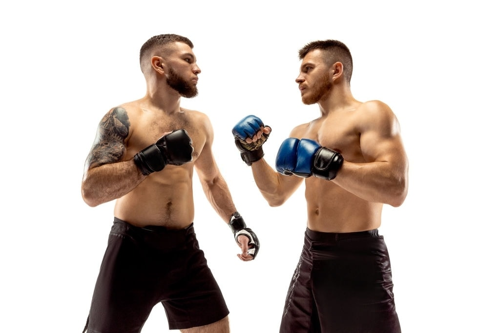 Two professional fighters posing isolated