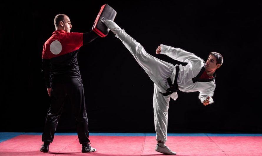 Taekwondo vs Brazilian Jiu Jitsu: Differences and Effectiveness