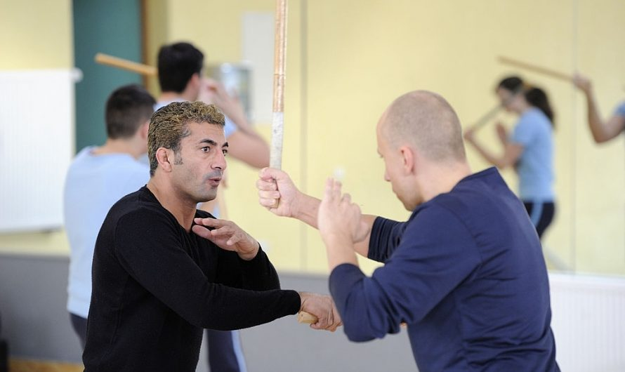 Wing Chun vs Taekwondo: Which One's Better for You?