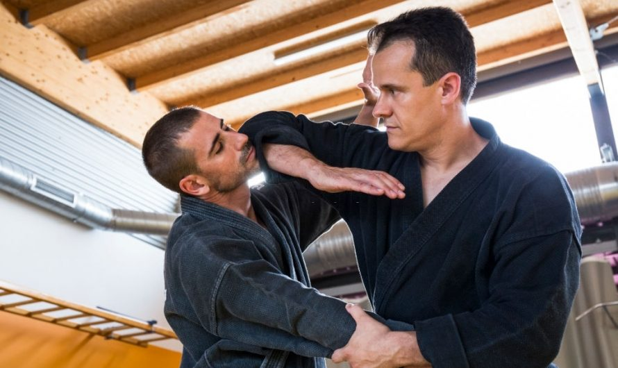 Aikido vs Wing Chun: Differences and Effectiveness